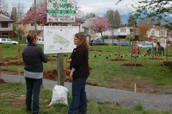 Copley Community Orchard 2012 2